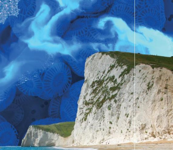 towering white cliffs of Dover in England are made of the chalky white shells