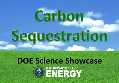 Carbon Sequestration, D.O.E. Science Showcase, U.S. Department of Energy