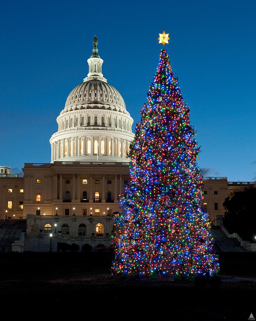 "Photographic credit: ""Architect of the Capitol."" 2010 LED Tree."