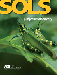 Jumpstart discovery with SOLS Magazine