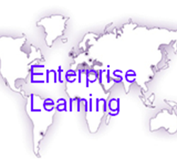 NYU-Poly Enterprise Learning meets the complex needs of large organizations worl