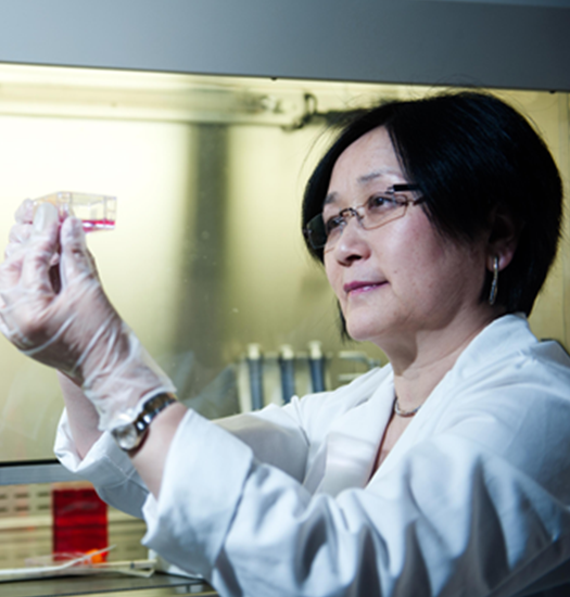 Professor Xinbin Gu Leads Howard Research in Oral Cancer Prevention