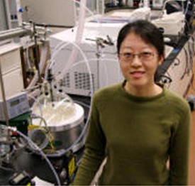 Engineering student Tingting Gao's work will help in fight against air pollution