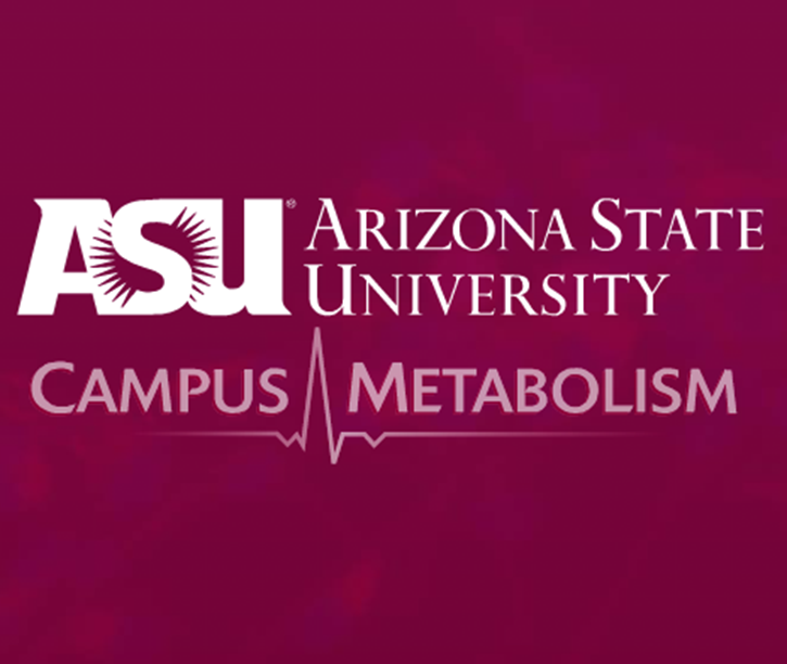 Metabolism - An interactive web tool that displays real-time energy use on campu