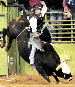Francis Marchand, No. 1 ranked bull rider named to dean's list