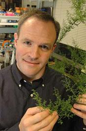 Chemical engineer Jay Keasling uses microbes to create next generation of fuel