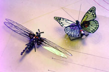 Insect Beam Robots